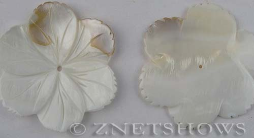 shell - natural color  flower Pendants <b>about 50mm</b>  with Saw Edge   per   <b>Piece</b>