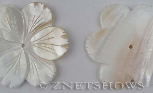 shell - natural color  flower Pendants <b>about 60mm</b>     per   <b>piece</b>