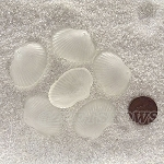 Cultured Sea Glass sea shell Pendants <b>31x22mm</b> 01-Crystal per <b>6-pc-bag</b>